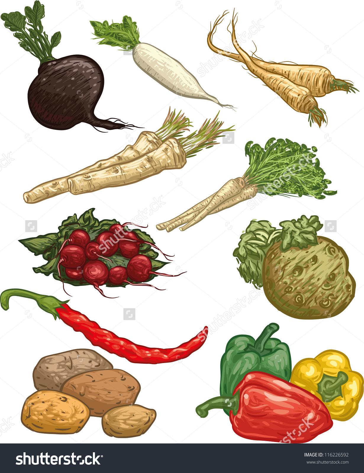 Set Ten Vector Illustration Vegetables Black Stock Vector.