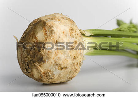 Stock Photography of Celeriac faa055000010.