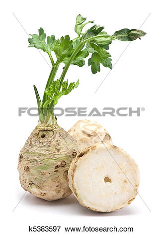 Picture of Fresh celery with root k5383597.