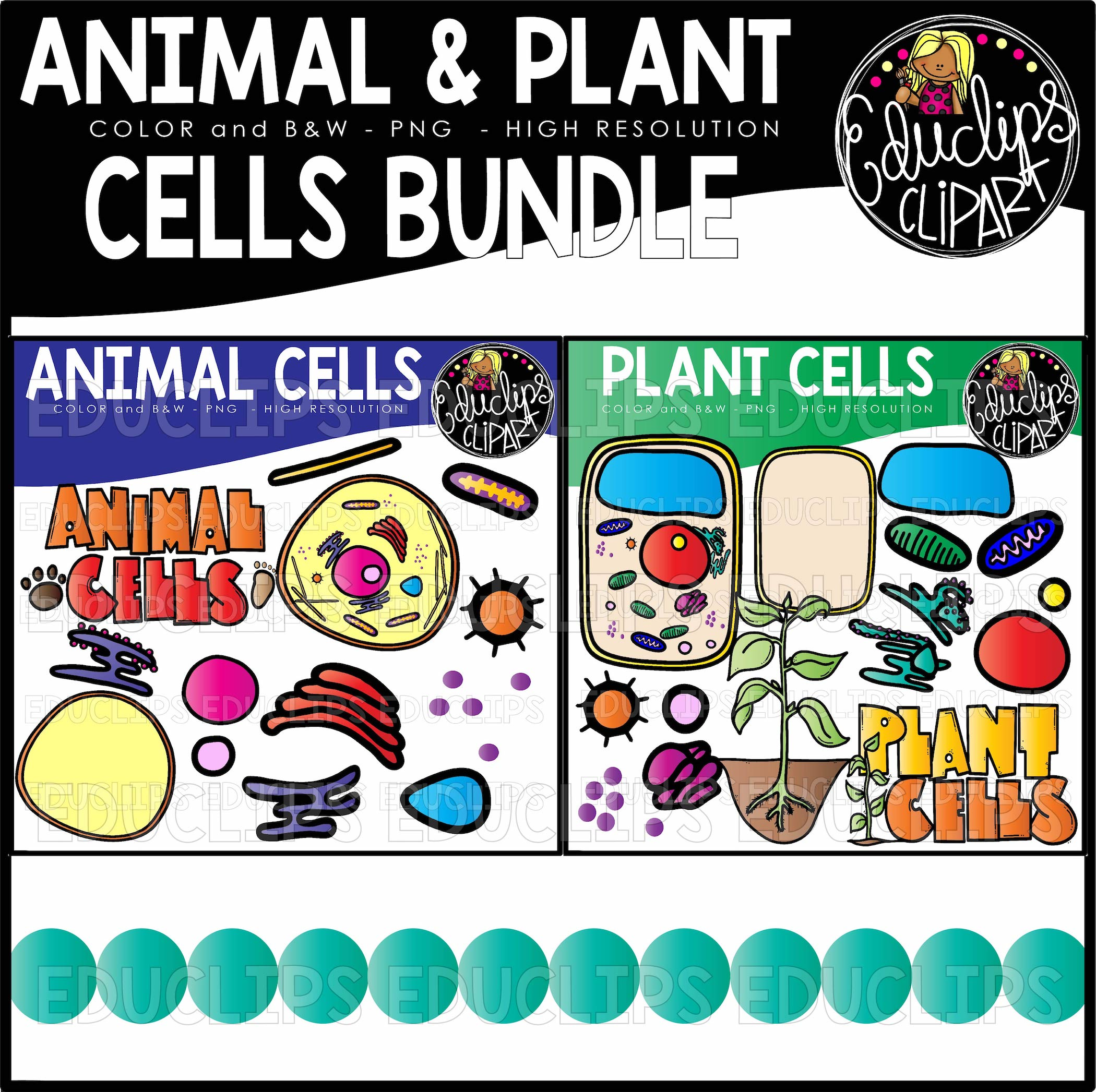 Animal and Plant Cells Clip Art Bundle.