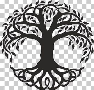 Celtic Tree Of Life PNG Images, Celtic Tree Of Life Clipart Free.