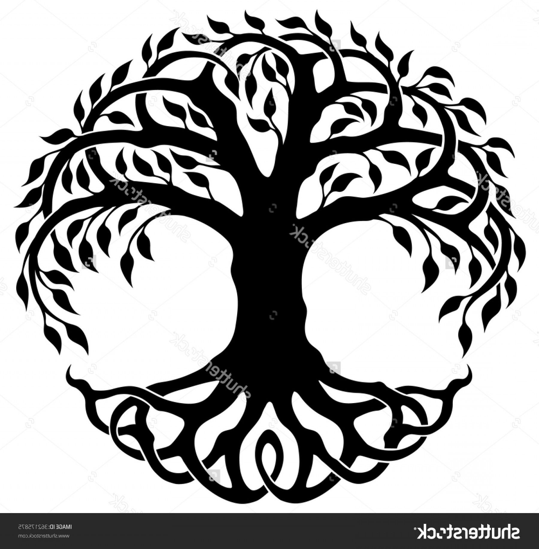 Celtic Tree Of Life Drawing.