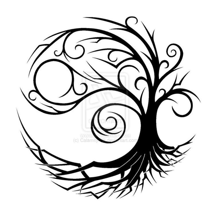 Tree of Life history and research. Celtic Tree of life and how it.