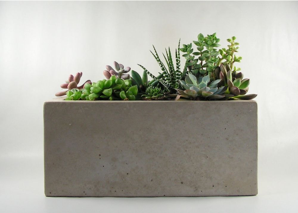 Rectangular Concrete Planter by roughfusion.