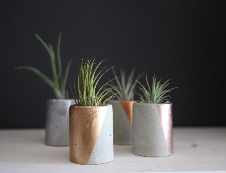 Concrete planter.