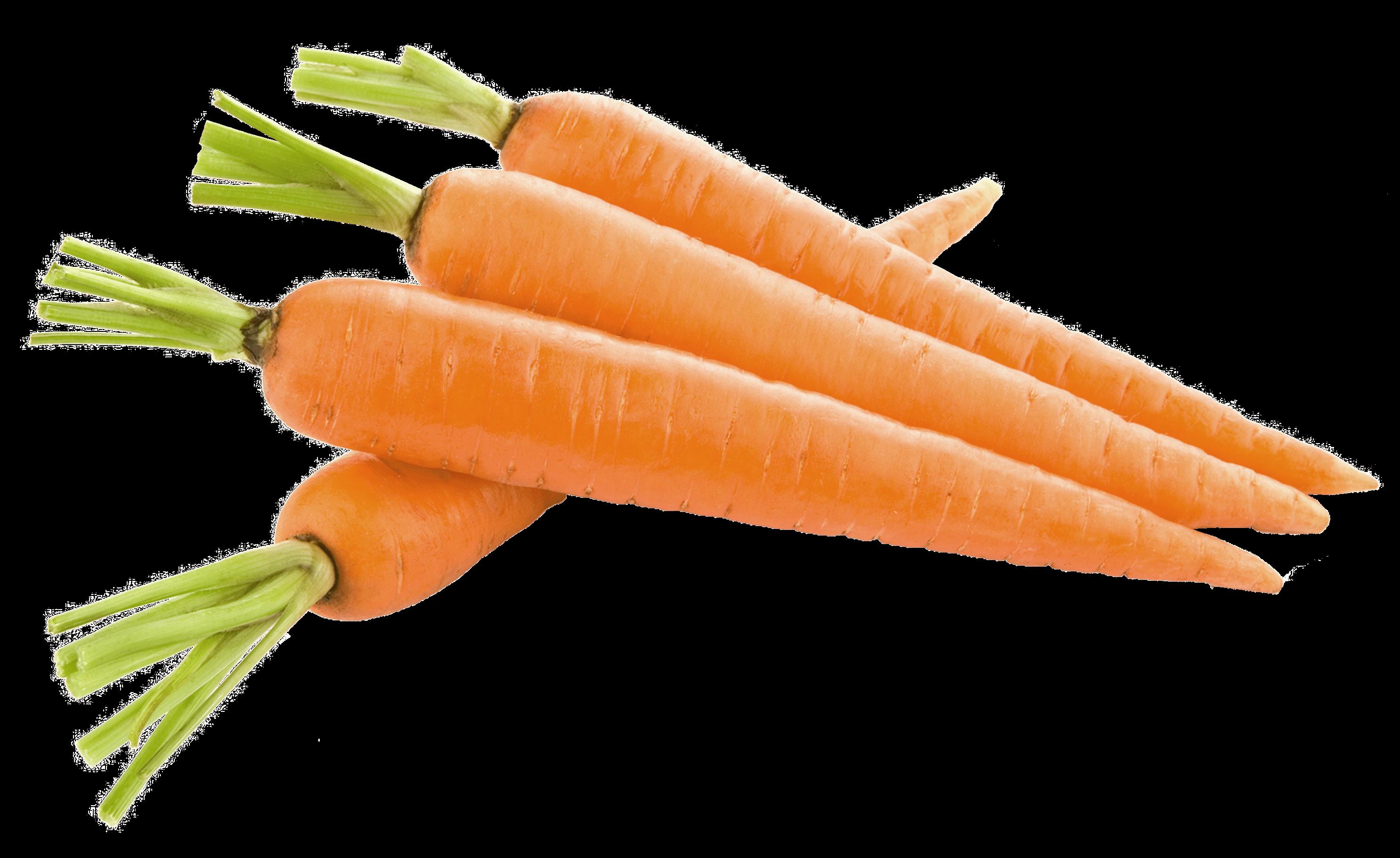 Cenoura.
