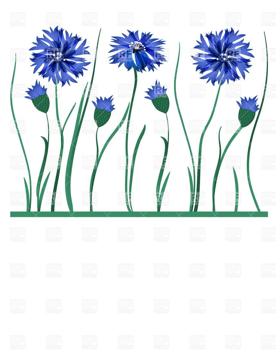 Cornflower Clip Art.