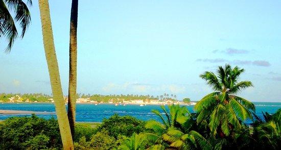 Pontal do Coruripe Beach (Brazil): Top Tips Before You Go.