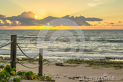 Vending Cart On Brazilian Beach Editorial Stock Image.