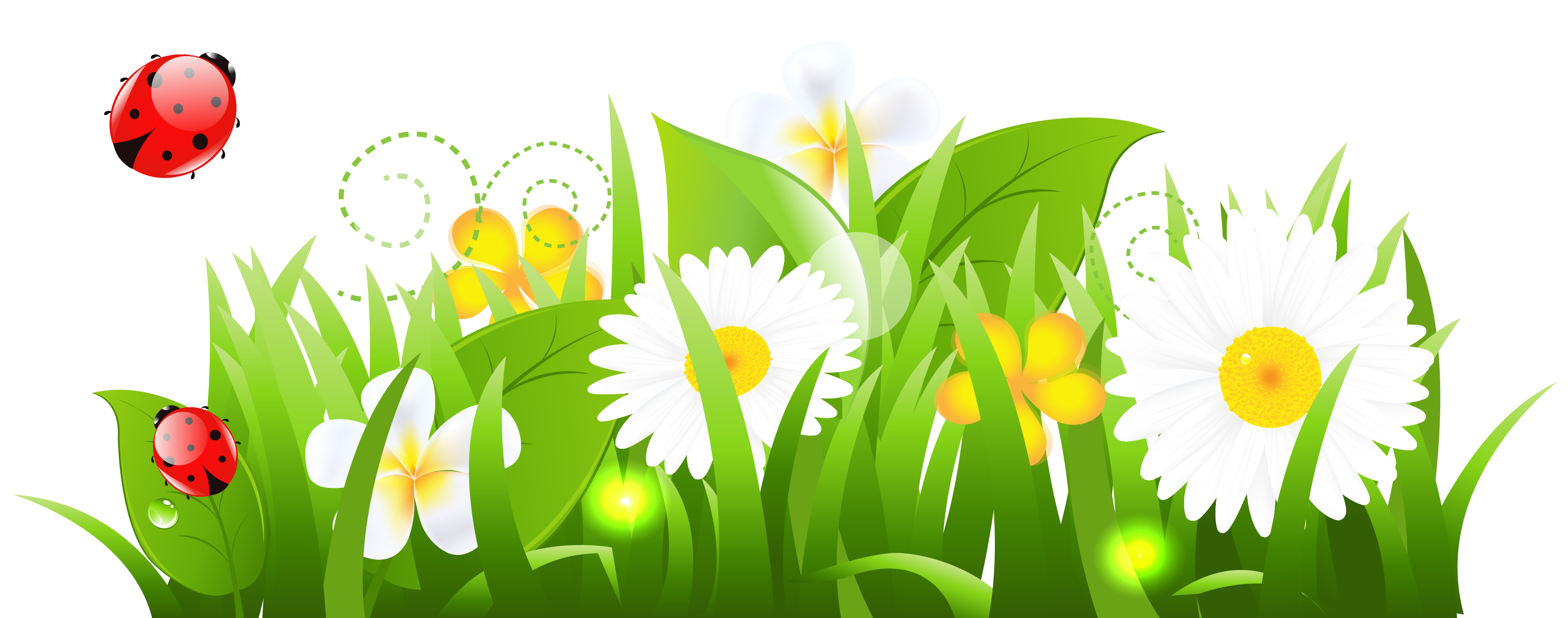 White flower green center clipart png.