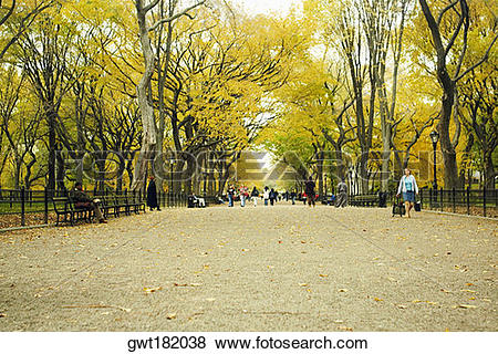 Pictures of Group of people in a park, Central Park, Manhattan.