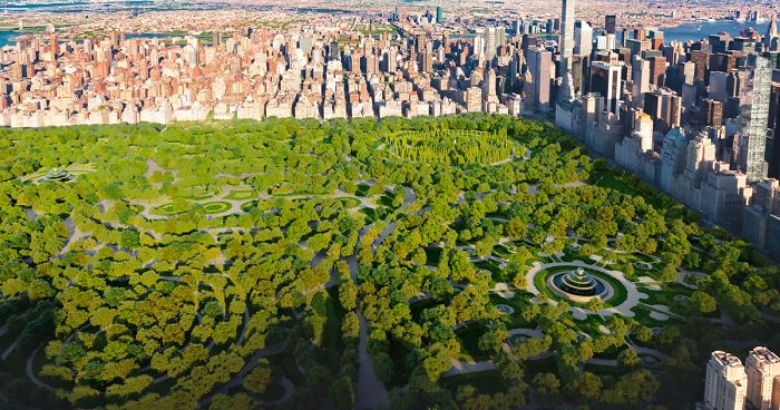 This Is How NYC Central Park Would Have Looked Based On A Rejected.