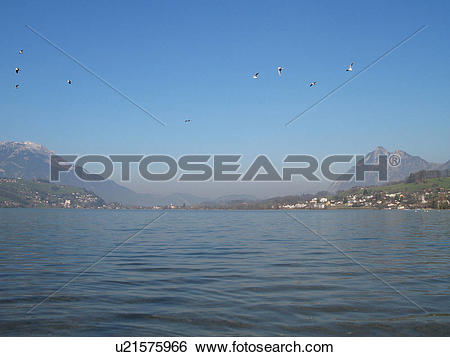 Stock Images of city, banks, Central Switzerland, beautiful, bay.