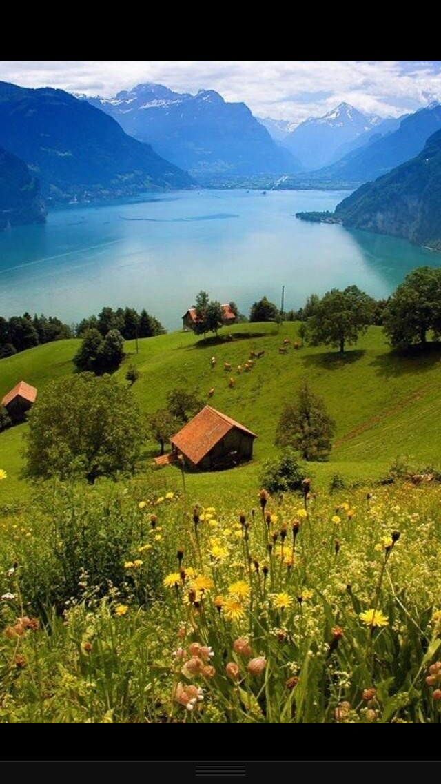 1000+ images about SWITZERLAND on Pinterest.