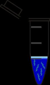 Centrifuge Tube Dna Blue PNG, SVG Clip art for Web.