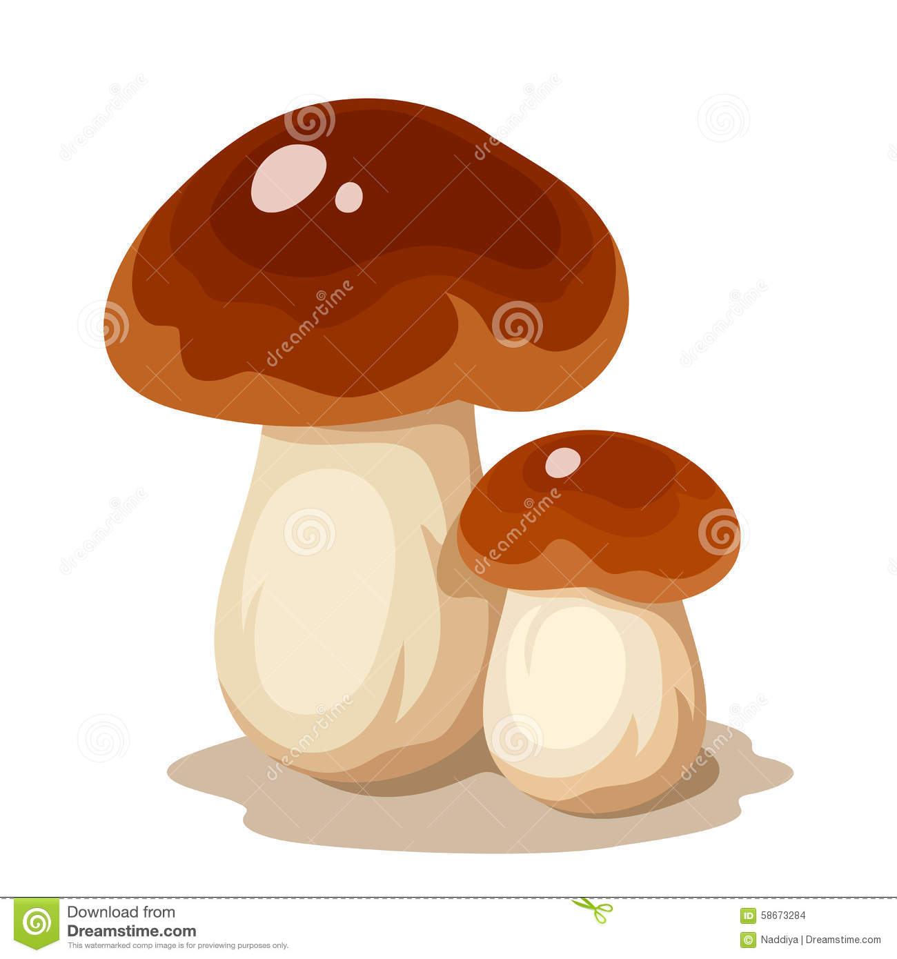 Two Cep Mushrooms. Vector Illustration. Stock Vector.