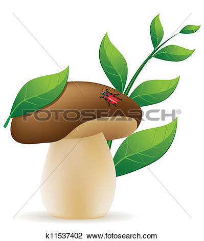 Clipart of mushroom cep vector illustration is k11537402.