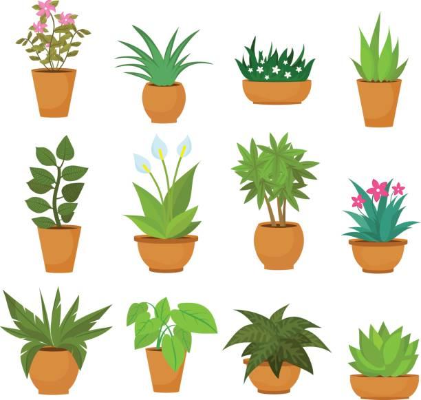 Top 60 Ceramic Pot Clip Art, Vector Graphics and Illustrations.