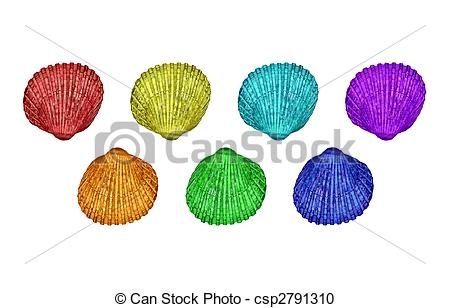 Stock Photography of Seven colourful cockleshells (Cerastoderma.