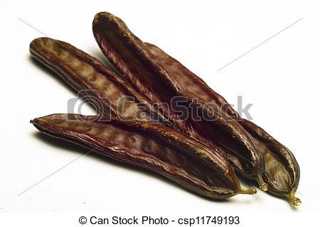 Stock Photographs of The Carob (Ceratonia siliqua).