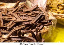Stock Images of Carob, ceratonia siliqua.