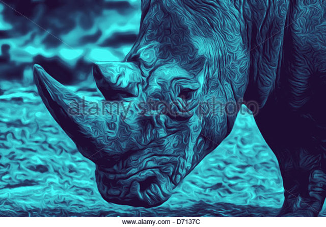 Rhino Illustrations Art Stock Photos & Rhino Illustrations Art.