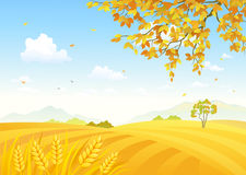 Cereal Field Scenic View Stock Illustrations.