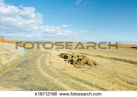 Pictures of Cereal field at the plains of Castilla y León, Spain.