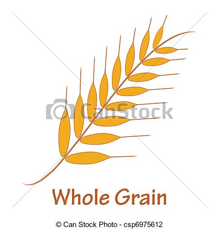 Vector Illustration of Whole grain.