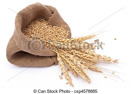 Grain Clipart and Stock Illustrations. 77,638 Grain vector EPS.