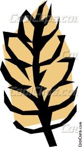 Cereal grains Vector Clip art.