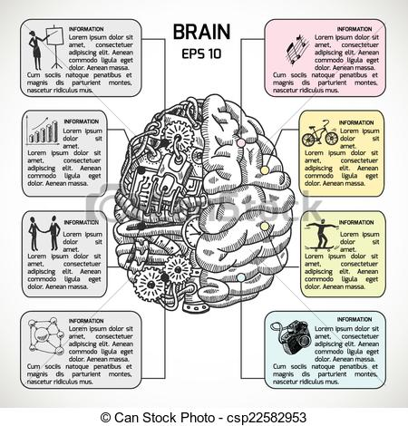 Cerebral hemispheres Clipart and Stock Illustrations. 365 Cerebral.