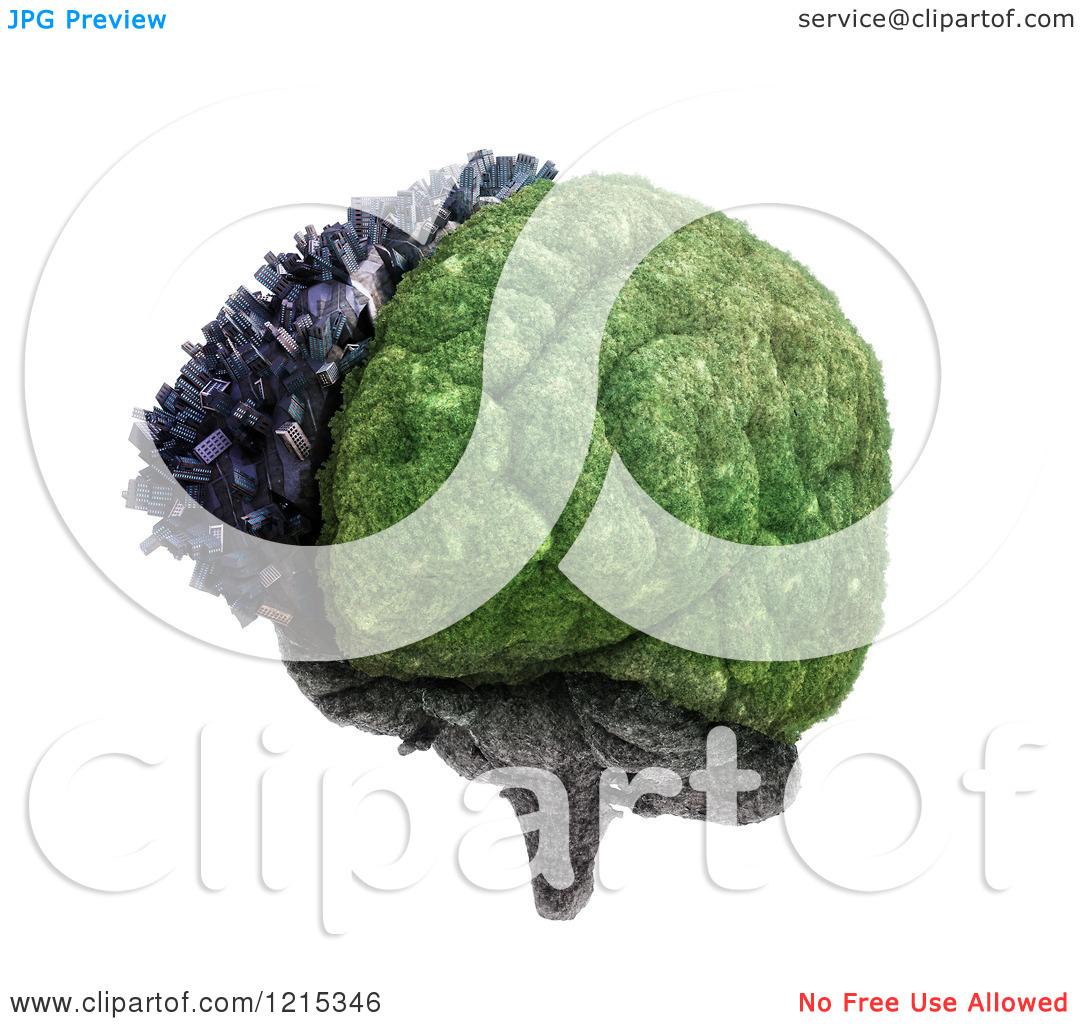 Cerebral Hemispheres Clipart.