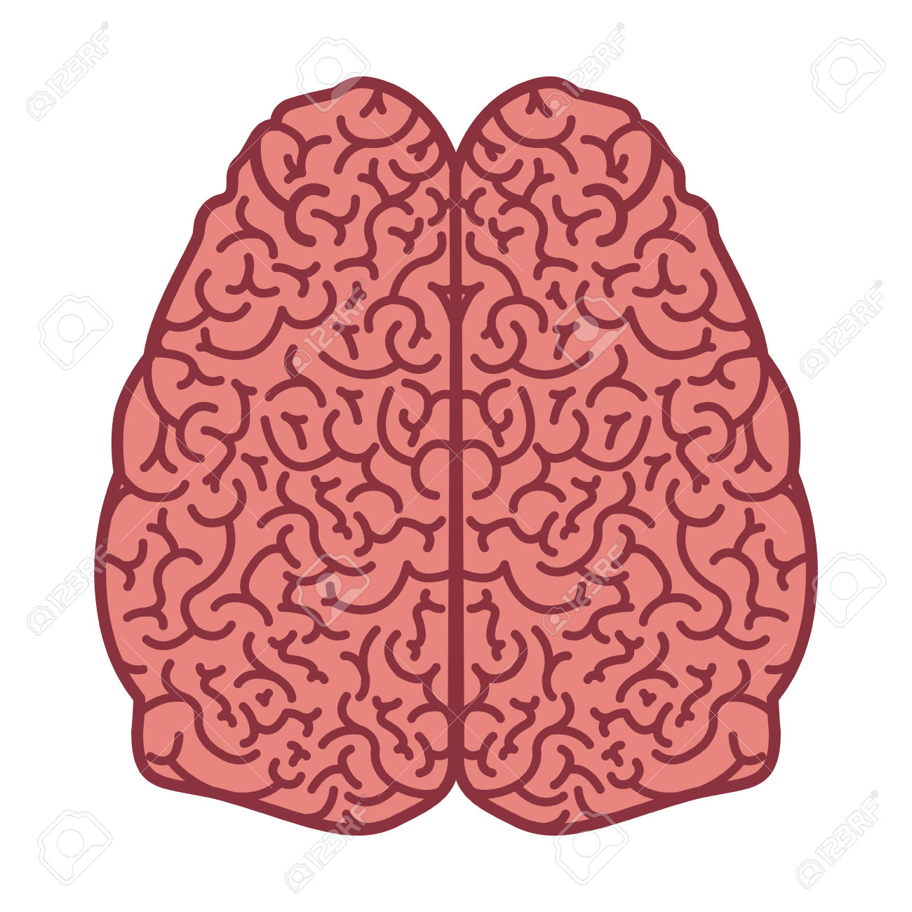 Brain Silhouette Color With Two Cerebral Hemispheres Vector.