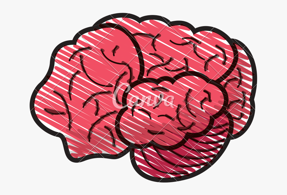Human Brain Doodle.