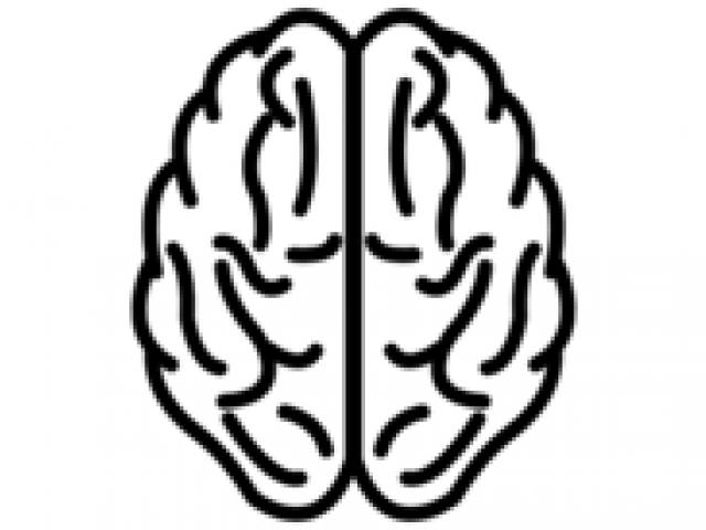Brain Clipart cerebro 11.