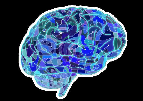 cerebro.png.