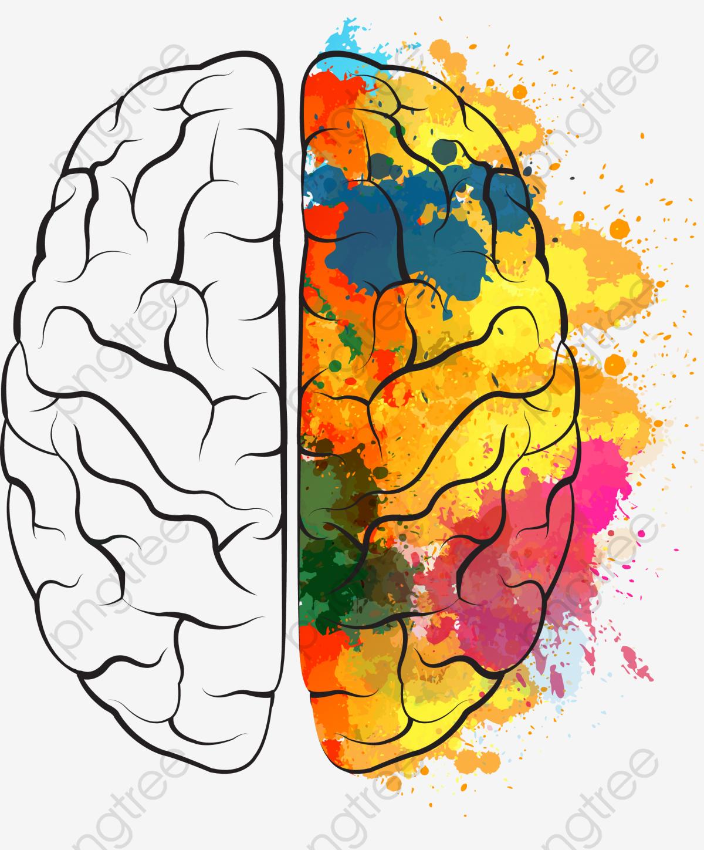 Pintado El Cerebro, Black, Cerebro, Pintado PNG y Vector para.