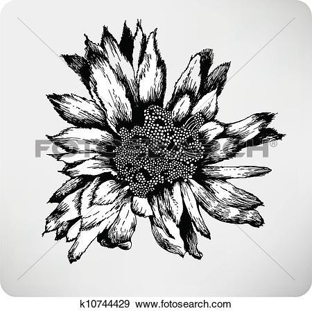 Clip Art of Hand drawn flower cactus Cereus per k10744429.