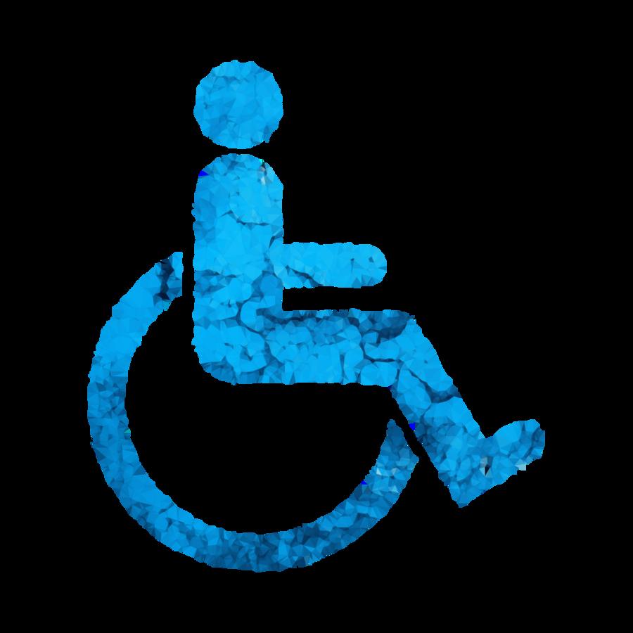certificado de discapacidad nacional clipart Florida.