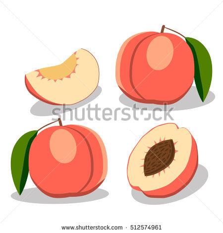 Peach Vector Stock Photos, Royalty.