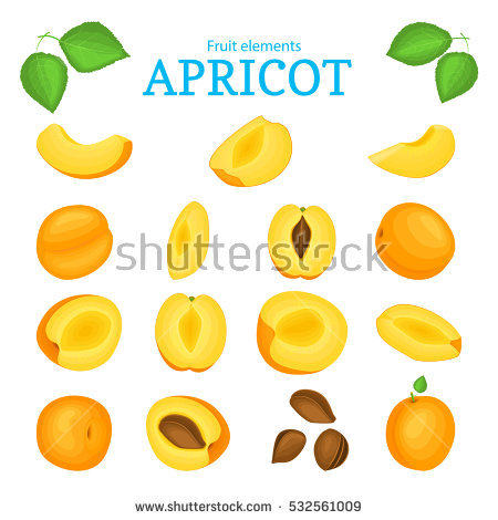 Yellow Peach Stock Vectors, Images & Vector Art.