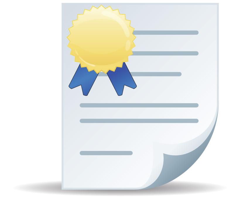Icon Certificate Vector #10318.