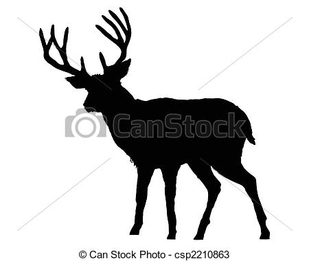 Cervidae Clipart and Stock Illustrations. 131 Cervidae vector EPS.