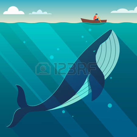 13,666 Whale Stock Vector Illustration And Royalty Free Whale Clipart.