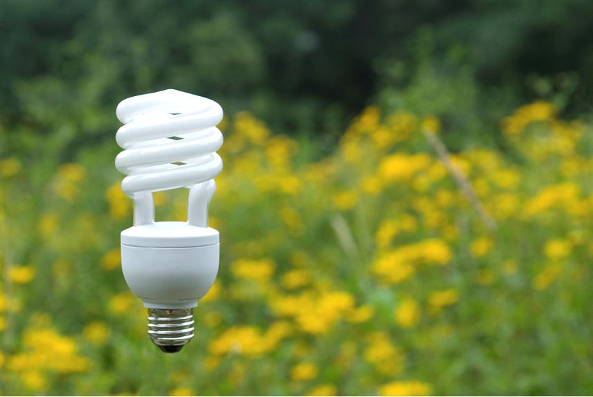 Cfl bulb clip art.