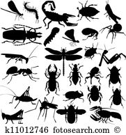 Chafer Clip Art EPS Images. 107 chafer clipart vector.