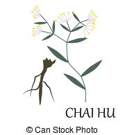 Chai Stock Illustration Images. 171 Chai illustrations available.