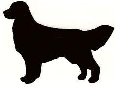 This =Buddy our Doberman German Shepherd.