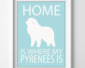 Pyrenees.